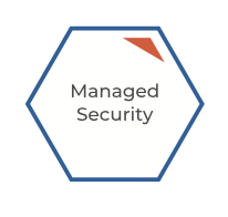 managesecurity